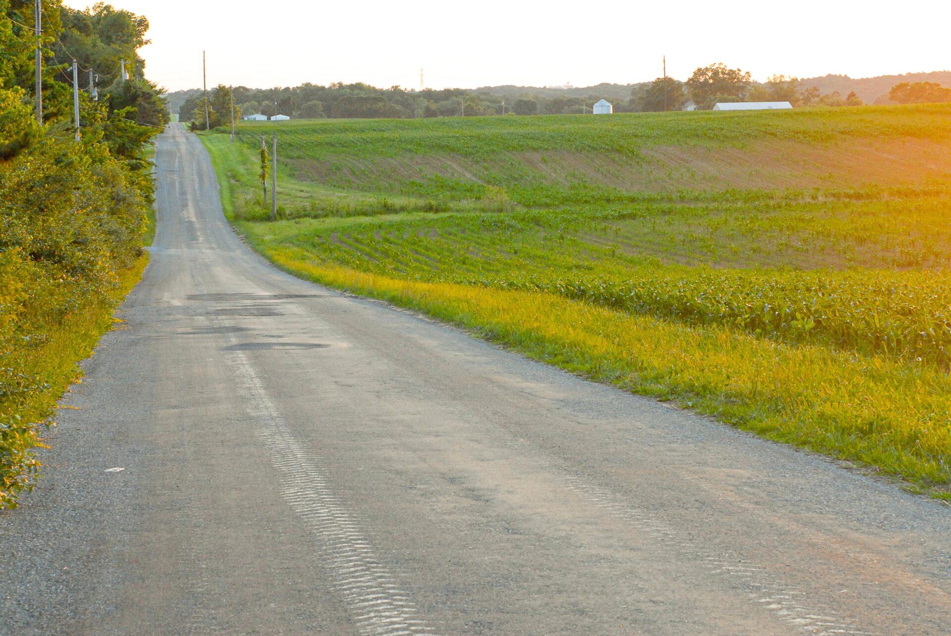 Scratch Gravel Road 6248