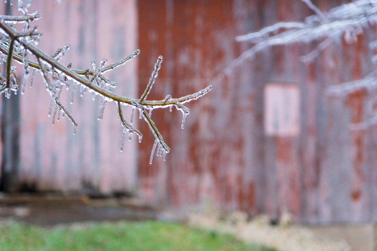 ice-storm-liberty-in-5